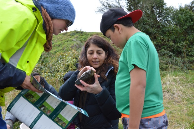 Dr Joanne Clapcott from the Cawthron Institute identifying stream inhabitants with wananga participants from Makarika and Hiruharama.